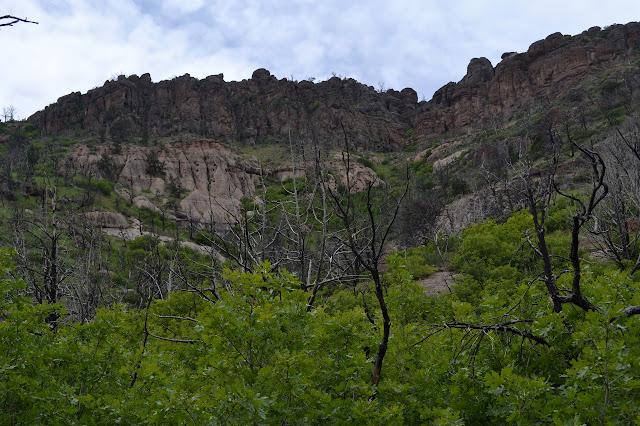 taller, darker cliffs