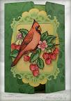 Gatefold Cardinal