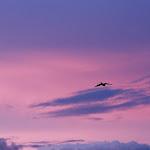 Atardecer en la Sucursal del cielo - Maria del Mar Figueroa.JPG