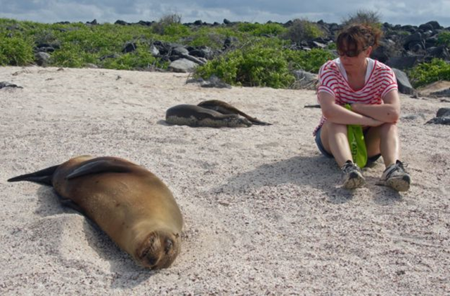 Sally Kettle and Galapagos fur seals on Isla Espanola, 27 February 2016. Photo: BBC News