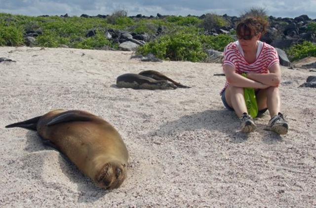 Sally Kettle and Galapagos fur seals on Isla Espanola, 27 February 2016. Photo: BBC News