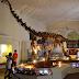 Museus fluminenses terão capacitação para o período pós-pandemia