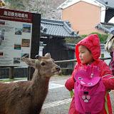 2014 Japan - Dag 8 - jordi-DSC_0439.JPG