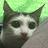 TJ Dash avatar image