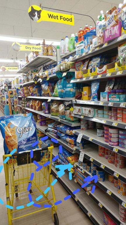 9Lives cat food location at Dollar General #shop #CelebratingMorris