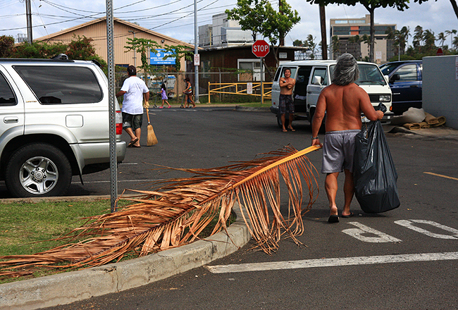 kewalo cleanup, kewalo development