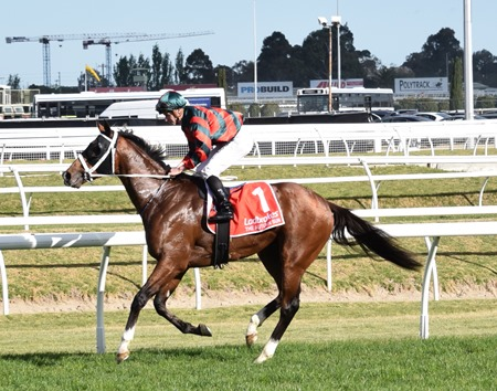 caulfield guineas_the autumn sun 21