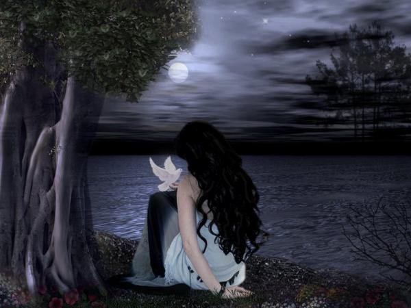 Beauty And A Bird At Night, Magic Beauties 3