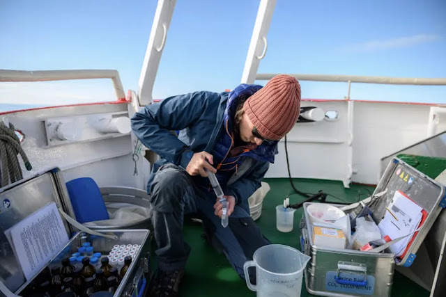 microbial change that could change the Arctic forever 1