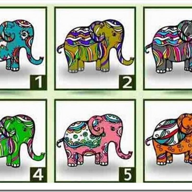 descubre el mensaje que te trae el elefante