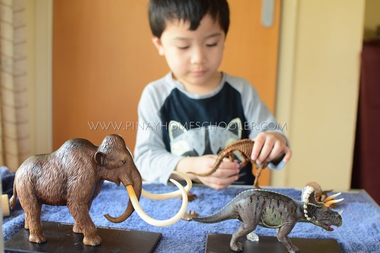 IDENTIFYING THE DINOSAUR