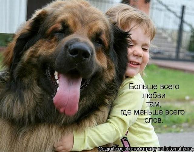 Ни дня без улыбки. Жизнь прожить может каждый. А вот получить за её описание гонорар...