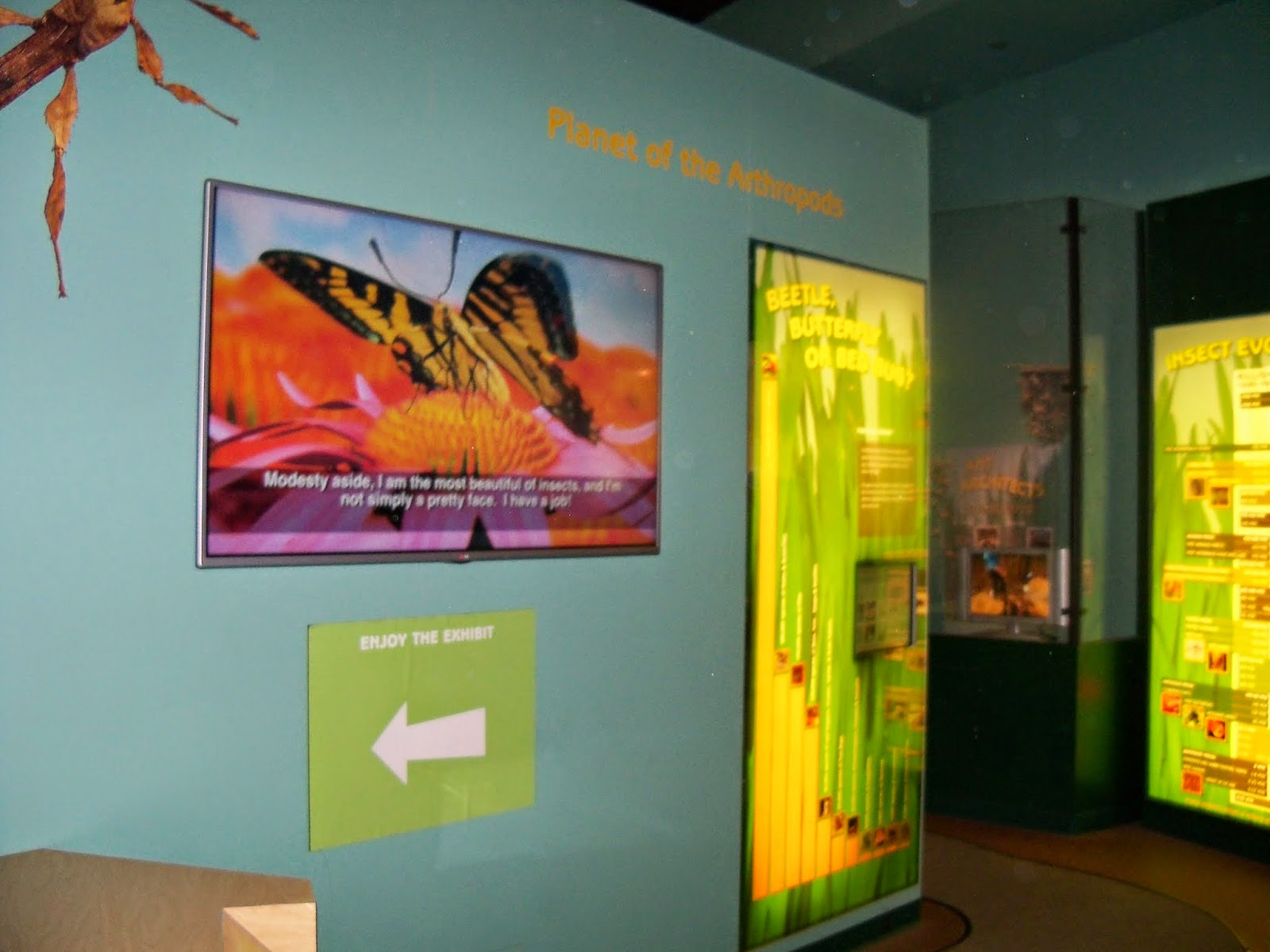 Houston Museum of Natural Science - 116_2848.JPG