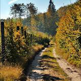 Wycieczka do lasów Chylońskich 9.10.2010