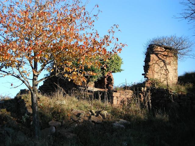 El Passarell