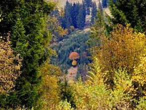 Gréces ősszel