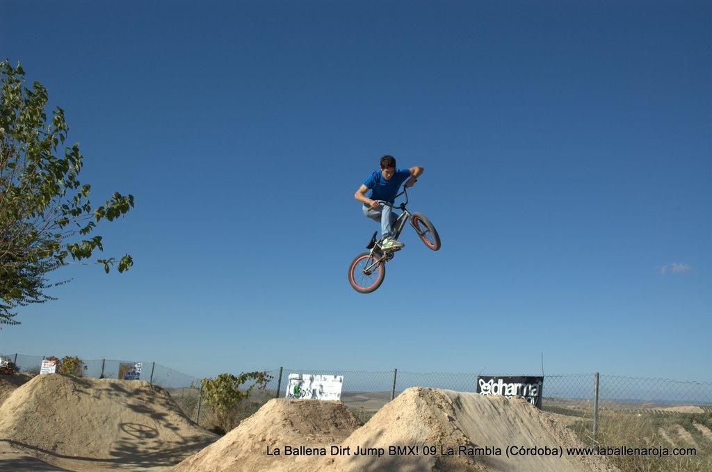 Ballena Dirt Jump BMX 2009 - BMX_09_0053.jpg
