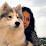 Rupal Vadera's profile photo