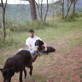 Campaments Estiu Cabanelles 2014 - IMG_0325.JPG