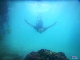 pulau pari, 23-24 mei 2015 15