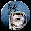 See Spot Jump's profile photo