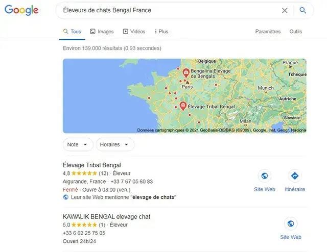 Éleveurs de chats Bengal France