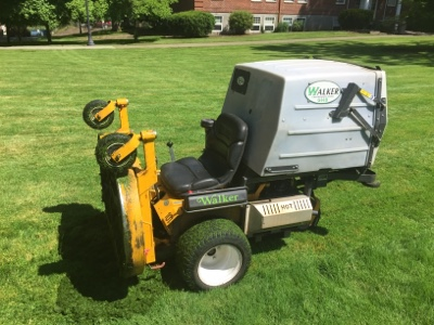 Being a Lazy Lawnmower Improves Bee Habitat: TWS Member