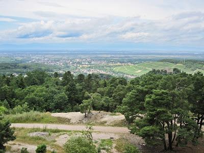 ... das Klemmbachtal mit Badenweiler und Müllheim sowie die dahinter liegende Rheinebene