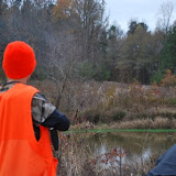 Jake and Hen Pheasant