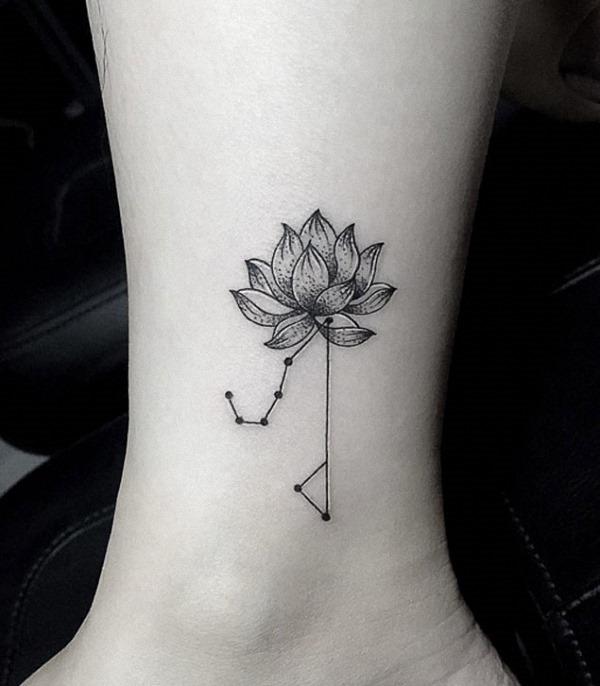 esta_combinaço_constelaço