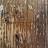 Rebecca Thomas avatar image
