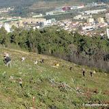 Plantação Árvores Serra Sta. Justa - Valongo - 14Dez2013