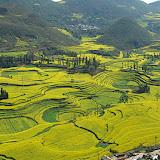 Yunnan - Luoping, YuanYang, Mt Meili