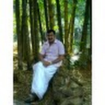 jomon varghese about, contact, photos