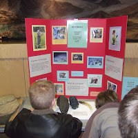 Geology Merit Badge Clinic at Burke Museum - DSCF1157.JPG