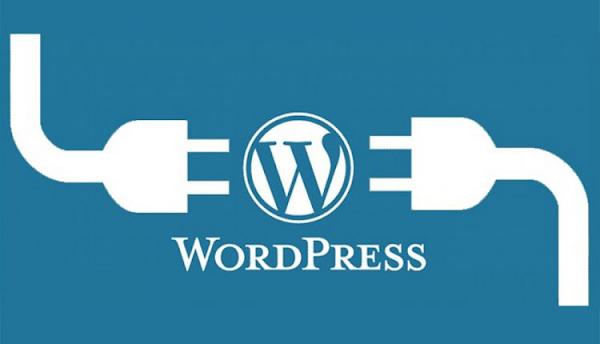 Plugin Backup WordPress Gratis Terbaik Dan Terpopuler