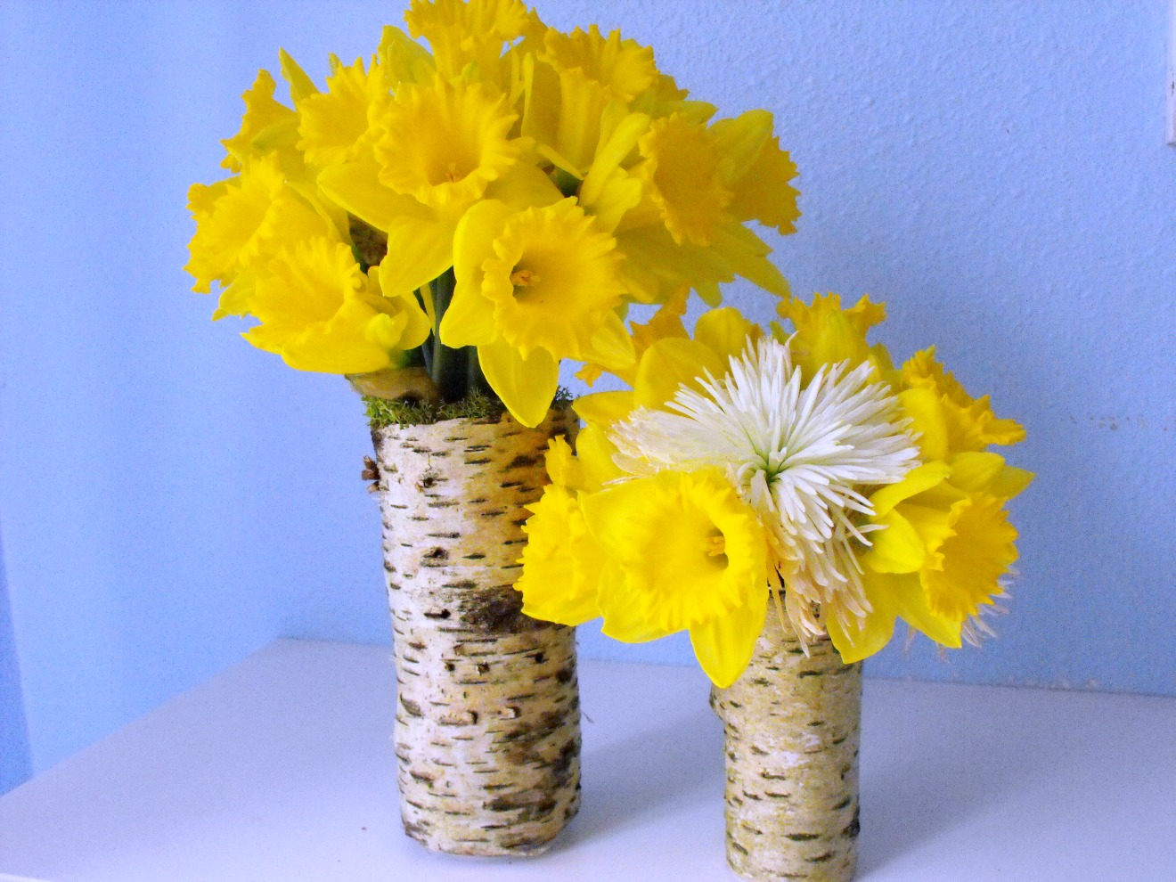 How to make tree bark vases crafty little gnome how to make tree bark vases reviewsmspy