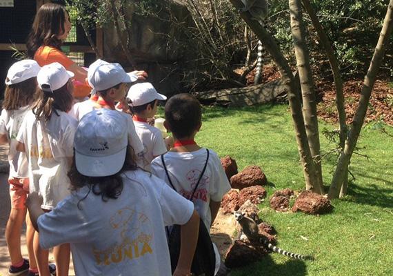 Campamentos de Verano 2015 en Faunia