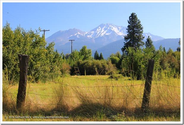 160806_Mt-Shasta_0027