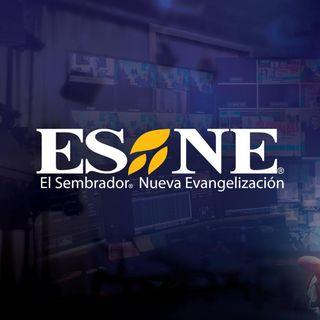 Logo ESNE