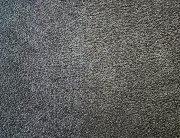 Avatar movie leather texture
