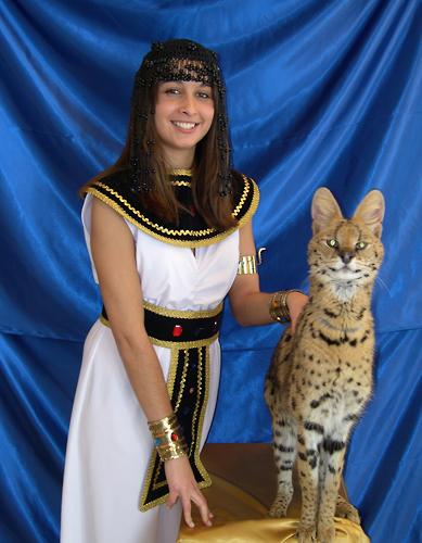 With Bastet, Egyptian Magic