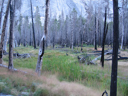 Hiking back down to Yosemite Valley.