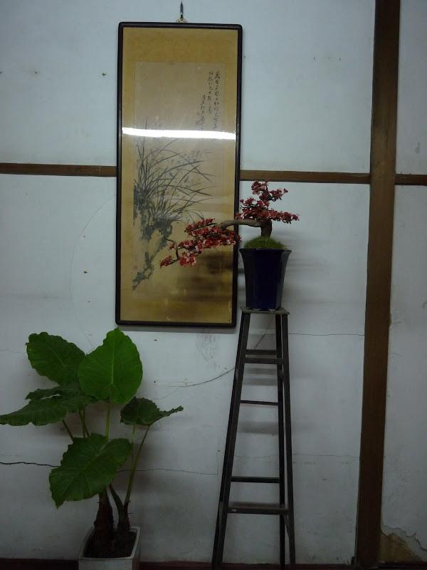 TAIWAN.Shen Keng , dans la banlieue de Taipei - P1090979.JPG