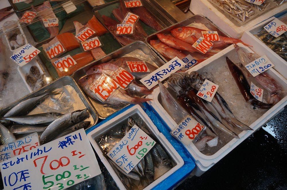 tsukiji-fish-market-17