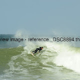 _DSC8894.thumb.jpg