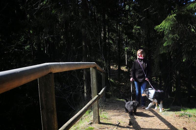 2015.04.19-Am Epprechtstein mit Steffen von Uwe Look - DSC_0217.JPG