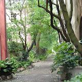 Beautiful alleyway.jpg