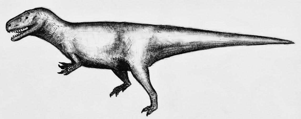 eure dinosaurier-Bilder - Seite 2 Edmarka_rex