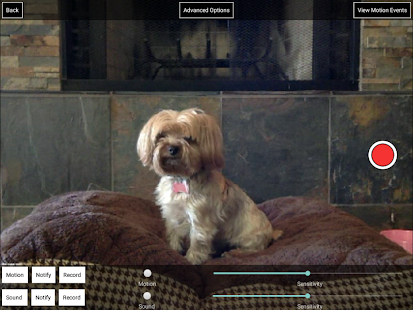 iCam Pro - Webcam Streaming- screenshot thumbnail